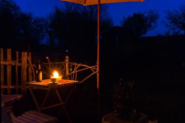 Abendstimmung im Garten