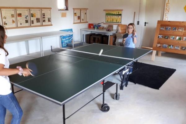 Freizeitspaß für die ganze Familie- Tischtennisplatte!