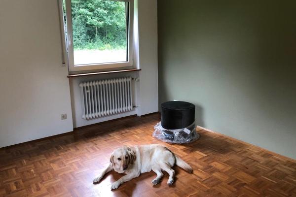 Böden & Wände sind fertig. Wir warten auf die Möbel.