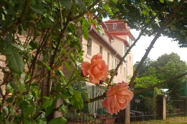Wohnen inmitten der Natur und ganz nahe des Zentrums der Stadt Öhringen