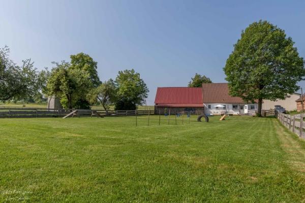 Doppelt gesicherter 1000m² Garten (1,2m hoch, mit Lattenzaun & Draht!)